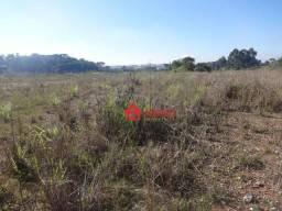 Terreno à venda, 12542 m² por R$ 1.920.000,00 - Thomaz Coelho - Araucária/PR