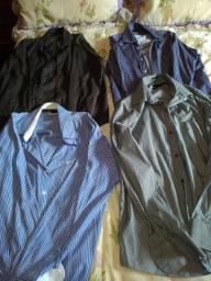 Camisas importadas semi novas