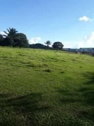 Fazenda 8228ha R$5120,00o Ha Sul Para Pecuária Lavoura Airton