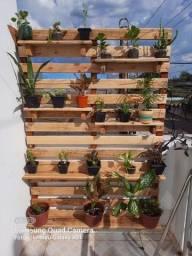 Título do anúncio: Painel para plantas - Pallet com Rapadura