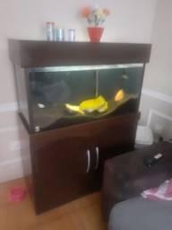 Título do anúncio: Vende ou troca  , aquário de 200 litros