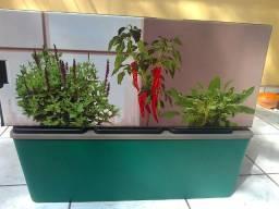 Cultive horta compacta