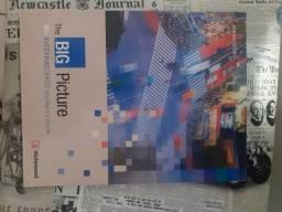 Livro The Big Picture