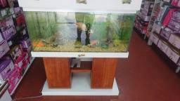 aquario completo 100x40x50 200 litros