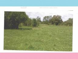 Garruchos (rs): Fração De Terras De Campos E Matos 20ha kddyo wehnu