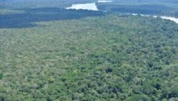 Fazenda no Sul do amazonas