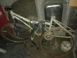 Quadro Motorella/Walk Machine