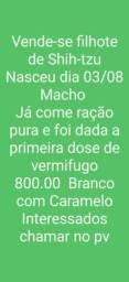 Título do anúncio: 800 reais