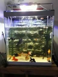Lindo aquario vertical de 560 litros completo e fundo 3D