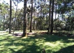 Terreno à venda, 750 m² por r$ 319.200,00 - caracol - canela/rs