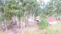 12 hectares