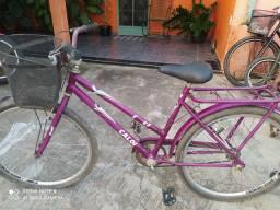 Bicicleta poti 300,00