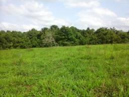 Fazenda 6 Anos Prazo. Araguaína-TO (Plana-Beira Asfalto)
