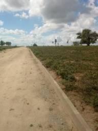 Parcelas de R$ 198,00 - Excelentes terrenos próximos a Humildes