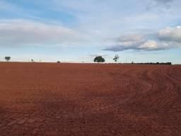 Fazenda de 250 alqueires, mun. de Santa Rita Do Pardo MS (dupla aptidão)
