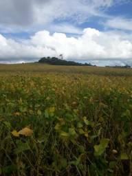 Fazenda congonhinhas Aceitamos contra proposta