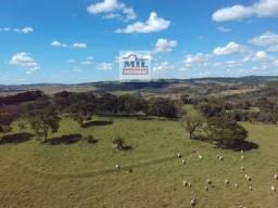 Fazenda 17 alqueires (82.28 hectares)- Heitoraí - GO