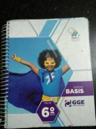 Coleção Basis GGE -6 série - Volume 2