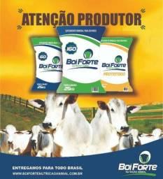 Suplemento Mineral para bovino