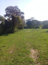 Alugo Chácara 4,5 hectares