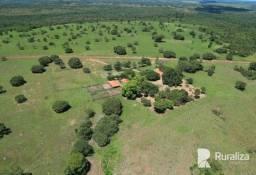Fazenda de 207 alqueires em Pium -TO