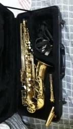 Sax alto (Michael) Dourado+Acessórios profissionais