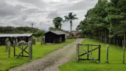 Fazenda para Venda, São Bento do Sul / SC, bairro Sertãozinho