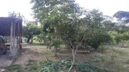 Sitio localizado depois da Paraiba, Catu - Ba, 17.424 m²