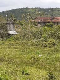 Fazenda ilhéus urucuca 139 hectares
