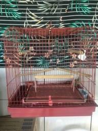 Vendo gaiola com calopsita
