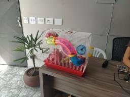 Título do anúncio: Gaiola para Hamsters com bebedouro, comedouro e Hamster sírio filhote