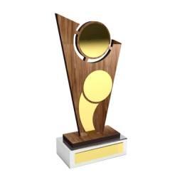 Troféu De Homenagem P/ Esporte Personalizado/premiação/box
