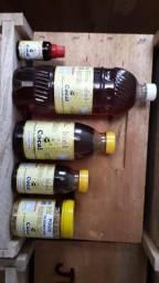 Apiario Cocal