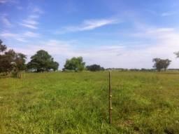 Sitio 20 Alqueires, Região de Tatuí-Sp