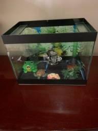 Título do anúncio: Vende-se aquário.