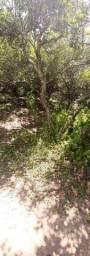 Terreno no Bairro Estaleirinho - frente mar
