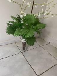 Vaso de decoração