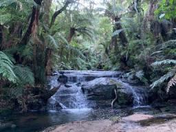 Título do anúncio: Chácara com cachoeira em Urubici