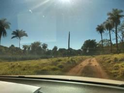 Faz 70 Alq a 15 km da cidade de Paraiso