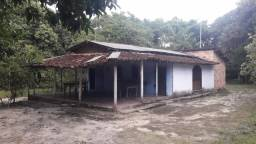 Sitio c Igarapé Santo Antônio de Tauá 250 x 1000 mts