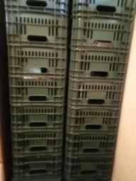 Caixa para expor frutas e verduras