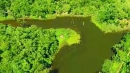 Fazenda Pugmil Tocantins