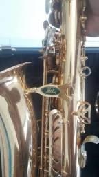 Sax alto weril espectra II em Eb (USADO)
