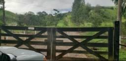 Fazenda em Campo Magro 60 Alqueires