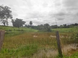 Fazenda 64 alq. Firminópolis