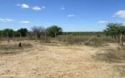 Terreno 15×40 na fazenda prado