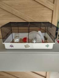 Título do anúncio: Hamster