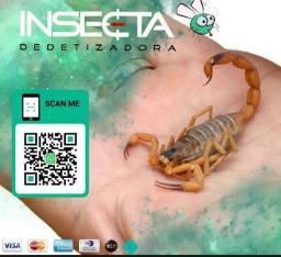 Título do anúncio: Dedetização para controle de escorpiões.