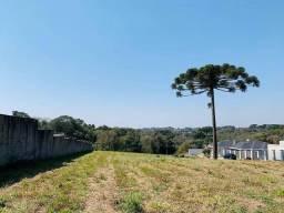 Título do anúncio: Terreno à venda, 6888 m² por R$ 1.200.000,00 - Fazendinha - Campo Largo/PR