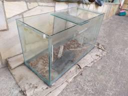 Terrário, aquário